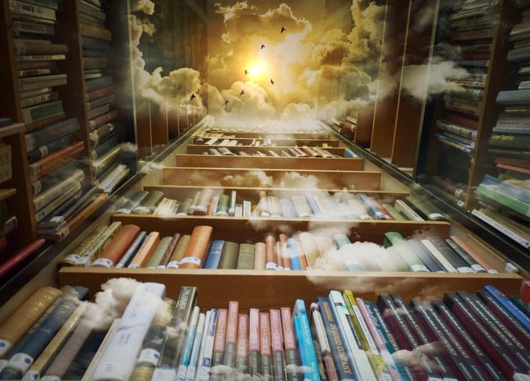 library-425730.jpg